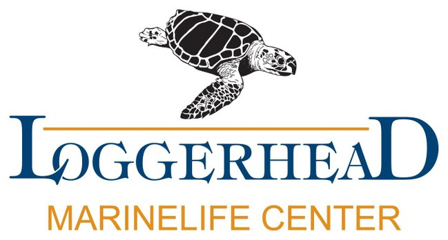 Loggerhead Marinelife Center's Junior Marine Biologist Camp