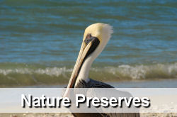 Nature Preserves in Jupiter