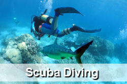 Scuba Diving Jupiter FL