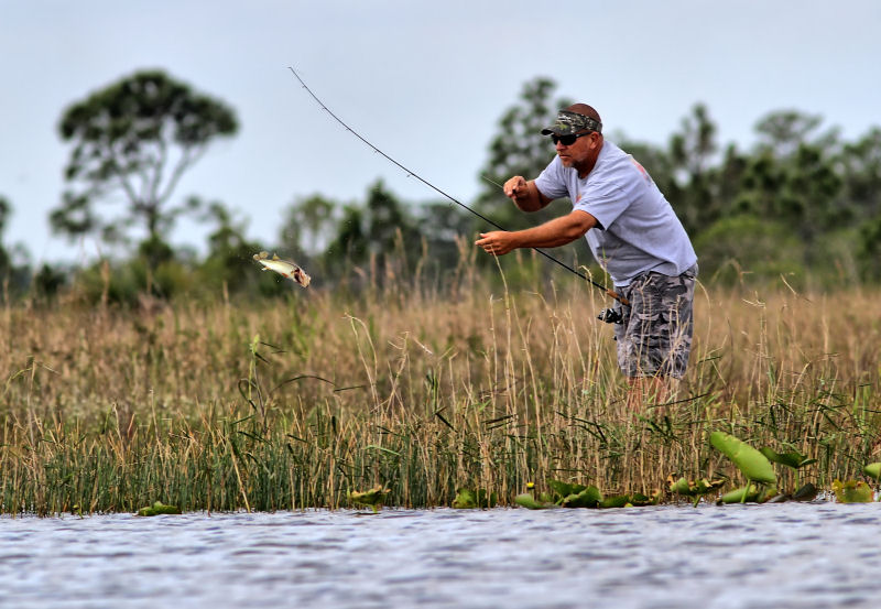 Fishing in Pine Glades, Jupiter, FL